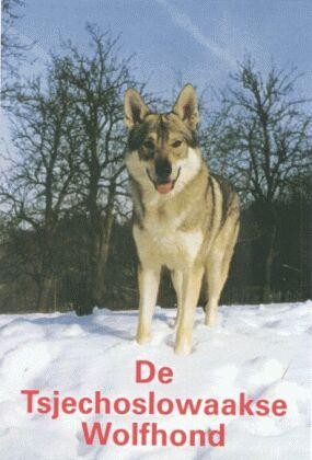 De Tsjechoslowaakse Wolfhond Lectuur